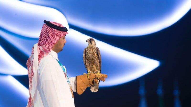بيع 6 صقور في ليلة واحدة من ليالي مزاد نادي الصقور السعودي الثاني